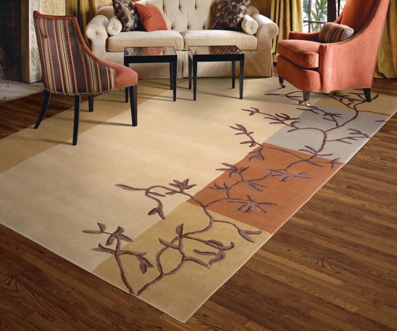Lcc fr area rug cleaning tips louisvile carpet cleaning for Accent rug vs area rug