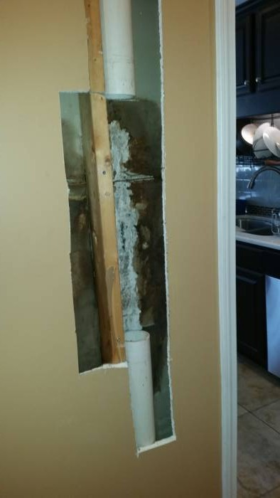 Mold growth on drywall removed in Louisville KY